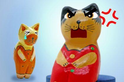 めっちゃ怒る猫