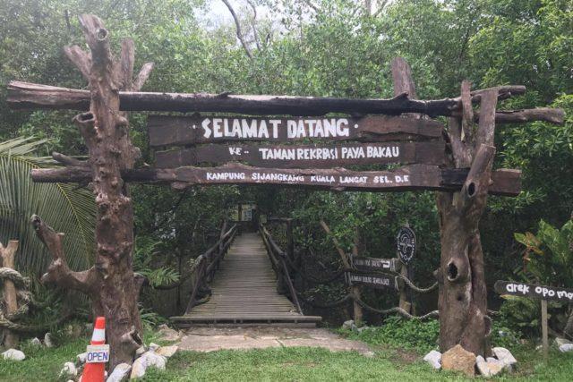マレーシアジャングル